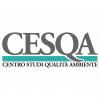 Picture of DII Cesqa